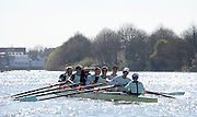 London, United kingdom. Cambridge BC Pre 2014 Varsity Boat Race Fixture, Cambridge University BC vs Molesey Boat Club, over the Championship Course; Putney to Mortlake, River Thames, Greater London on Sunday  16/03/2014 [Mandatory Credit: Peter Spurrier/Intersport Images]<br /> <br /> MOLESEY BC; Bow: Sam SCRIMEGOUR, 2: Pete ROBINSON, 3: Matt TARRANT, 4: Fred GILL , 5: Mo SBIHI,  6: Phil CONGDON, 7: George NASH, Stroke: James FOAD, Cox: Henry FIELDMAN