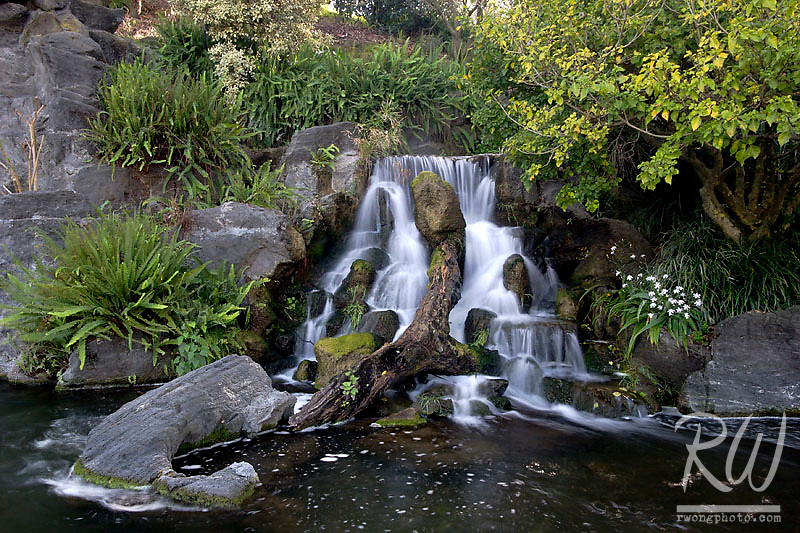 Mayberg Waterfall, Los Angeles County Arboretum, Arcadia, California