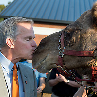 Kissing of the Camel