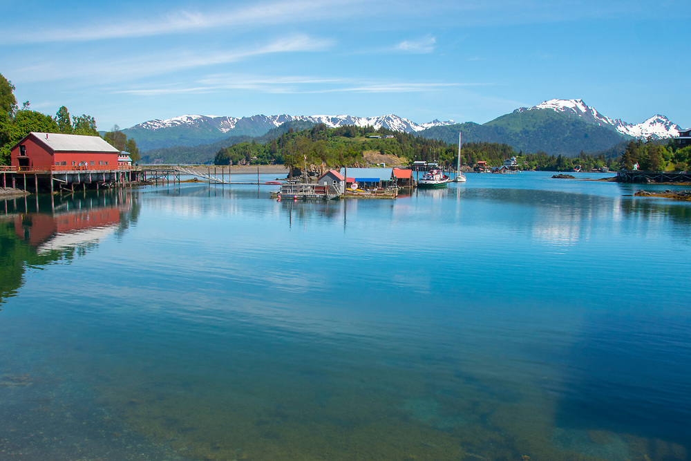 One of the most exciting and fun travel destinations is to Halibut Cove across Kachemak Bay from Homer. Accessed only by boat tours. Fine dining,shopping,fishing,sightseeing otters,puffins, sea birding,boating,eating.