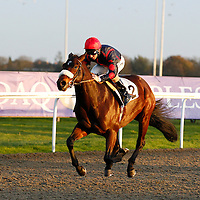 El Buen Turista and Jimmy Fortune winning the 3.20 race