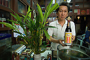Owner of traditional medicine and tonic store at his shop in Chinatown, Bangkok.