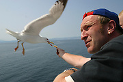 Tourists feed the seagulls with chips on a boat trip from the Greek island of Thassos to the main land.