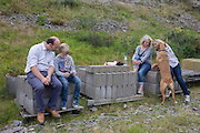 A father and son look at a smartphone together and girlfriends look at a pet dog's paws during a day out in wales, sit on concrete blocks.