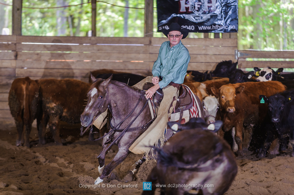 May 20, 2017 - Minshall Farm Cutting 3, held at Minshall Farms, Hillsburgh Ontario. The event was put on by the Ontario Cutting Horse Association. Riding in the 25,000 Novice Horse Non-Pro Class is Greg Wilde on Bobby Cee Lena owned by the rider.