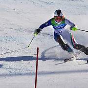 Winter Olympics, Vancouver, 2010.Johanna Schnarf, Italy,  in action in the Alpine Skiing Ladies Super Combined competition at Whistler Creekside, Whistler, during the Vancouver Winter Olympics. 18th February 2010. Photo Tim Clayton