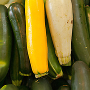 Zucchini (summer) squash for sale at a farmstand in Concord, MA
