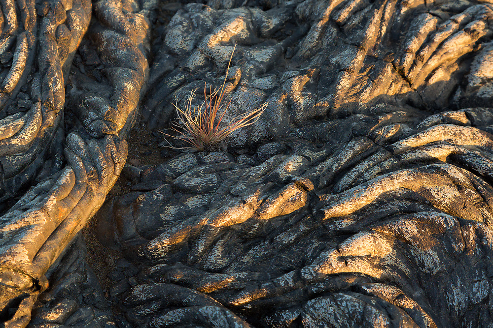 Lava flow pattern, Volcanos National Park, Hawaii