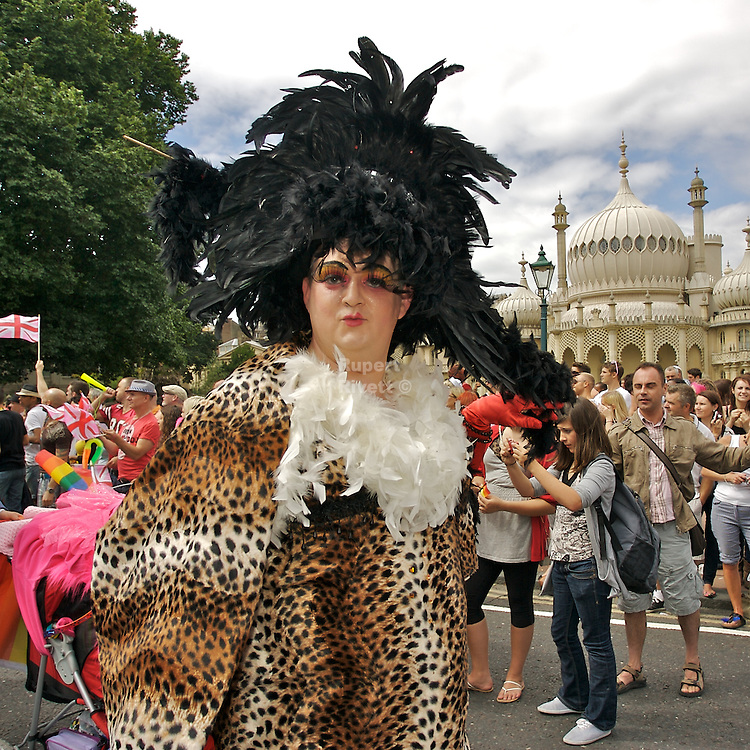 Brighton Pride is a registered charity from Brighton and Hove in England promoting equality and diversity, and advances education to eliminate discrimination against the lesbian, gay, bisexual and transgender (LGBT) community. It raises awareness of issues by promoting and staging a series of events including Winter Pride and the annual free summer festival and making grants and/or donations to other charitable and voluntary organisations. Its key objective is to develop an environment in favour of LGBT equality by providing information, advice and support.