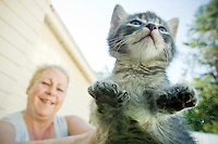 JEROME A. POLLOS/Press..One of Patricia Yanda's seven kittens born July 7, 2007 has seven toes on each paw. A normal litter of seven kittens would typically have toes adding up to 140. This litter has 160 with Sasquatch holding the individual claim of having a total of 28 toes.