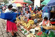 ECUADOR, HIGHLANDS, CUENCA vendors in outdoor produce market