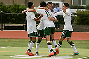 Alisal's Juan Iturbe (11) is congratulated on his header goal during the first half of Saturday's Central Coast Section Div-1 championship game against Bellarmine at Oak Grove High School in San Jose. Alisal won the championship 3-1.