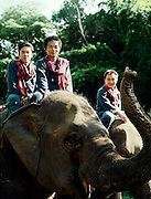 Mahouts and elephants at the Four Seasons Golden Triangle resort
