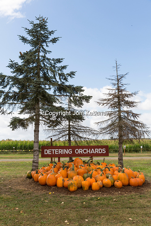Detering Orchards in Harrisburg, Lane County