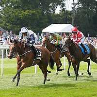 Newmarket 15th August