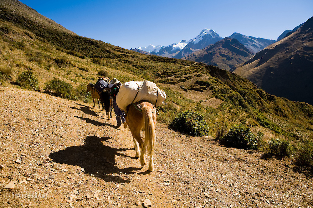A horse and porter are seen below Mt. Akhamani (a sacred mountain to the Kallawaya) as they begin a 5-day trek from the village of Curva in the southern Apolobamba range in Bolivia's Andes region.