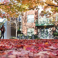 Fall colors, campus scenes, photo Patrick Sweeney