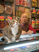 EXCLSUIVE<br /> Hong Kong's shop cats<br /> <br /> Your office job is tough. You have to wake up early, stare at a screen all day, and sometimes the kettle breaks and you can't make a cup of tea.<br /> But spare a thought for the real hard-workers.<br /> We're talking, of course, about the cats of Hong Kong.<br /> Every day, these hard-working felines wake up, stroll out of their little cat baskets, and get stuck in to a hard day working up front in their shop.<br /> <br /> Their days are spent tirelessly looking adorable, greeting customers, hunting mice, making sales, and ensuring high standards of cleanliness (mostly through licking, but still).<br /> It's tough work, but someone's got to do it. And these cats are entirely dedicated to their work, always willing to stay late and make sure everything's taken care of – even if that means napping behind the till.<br /> <br /> One photographer is taking the time to bring light to these unappreciated hard-workers, with a new photo series called Hong Kong Shop Cats.<br /> As part of his ongoing Chinese Whiskers series, photographer Marcel Heijnen has been documenting the lives of cats living and working in shops around Hong Kong.<br /> <br /> Originally from the Netherlands, Marcel was immediately drawn to Hong Kong's shop cats when he moved to the city – but he never thought they would become the focus of his next project.<br /> Marcel describes Hong Kong Shop Cats as a 'total fluke'.<br /> 'I moved back to Hong Kong after 18 years and found myself living without cats for the first time in 40 years,'<br /> <br /> 'So when I noticed a cat sitting proudly on the counter of a shop nearby my new place in the Sheung Wan/Sai Ying Pun area, I went over to pet it and took a few casual photos.<br /> 'I shot a few more of other shop cats nearby and put them on Facebook.'<br /> <br /> Of course, the reaction online was overwhelmingly positive. People loved the first few photos, and publishing house AsiaOne (who'd published Marcel's last book, Residue) took interest, suggesting that Marcel should make these cats the f