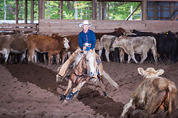 September 24, 2017 - Minshall Farm Cutting 6, held at Minshall Farms, Hillsburgh Ontario. The event was put on by the Ontario Cutting Horse Association. Riding in the $5,000 Novice Horse Class is Michelle Waters on Genuine Whyte Gold owned by Noreen Whyte.
