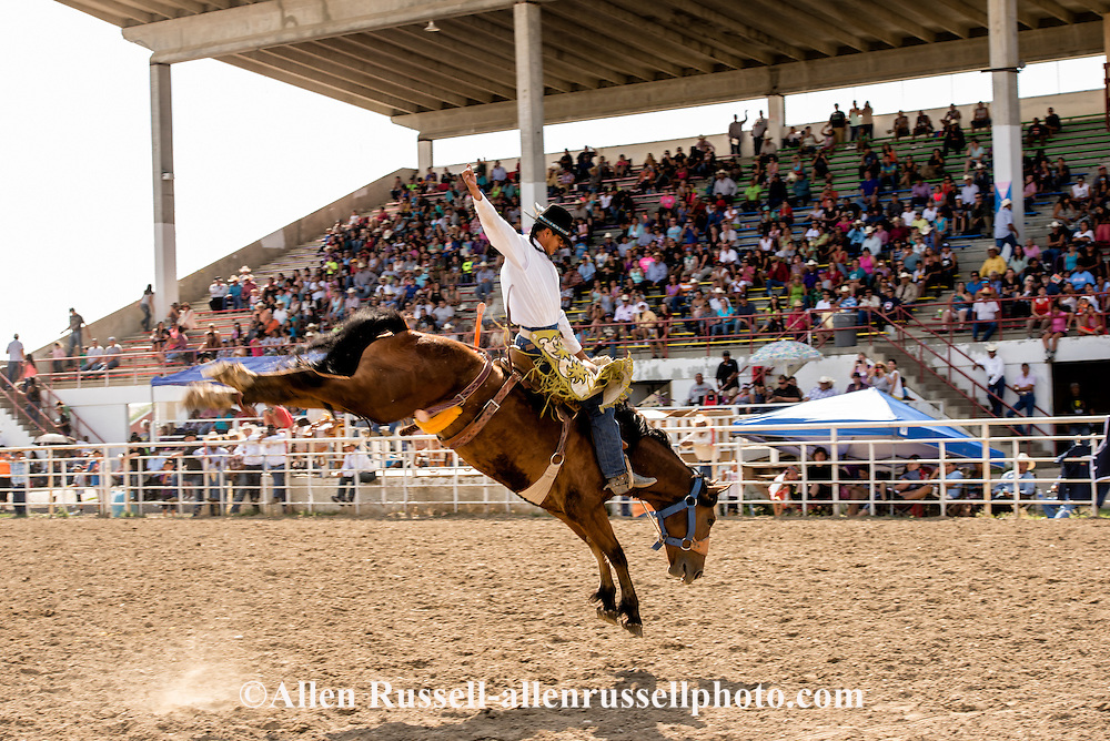 Saddle Bronc Riding, Crow Fair Rodeo, Crow Indian Reservation, Montana, Marty Young Bear