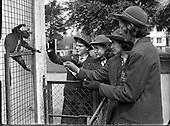 09-05-1960 Schoolgirls Visit Dublin Zoo