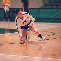 2nd year outside hitter, Jessica Lerminiaux (12) of the Regina Cougars during the Women's Volleyball home game on Thu Nov 15 at Centre for Kinesiology, Health & Sport. Credit: Arthur Ward/Arthur Images