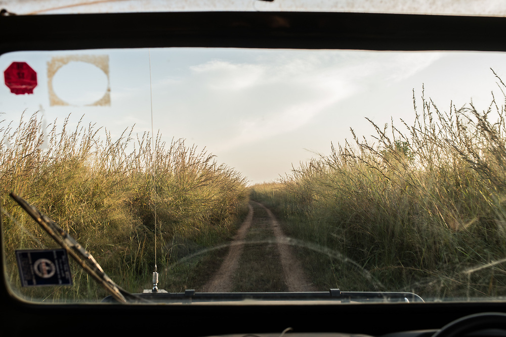 Tall grass surrounds the road during a tour of Garamba National Park on November 26, 2017.