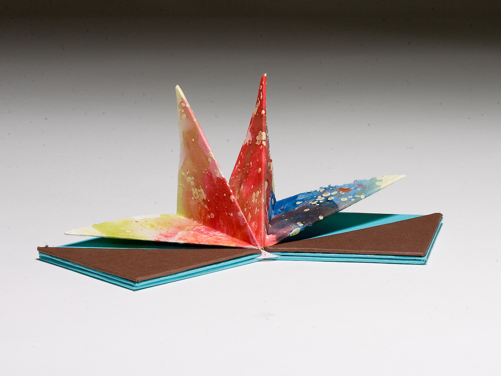 Artist: Shanna Kaczynksi. Pop up book with decorated paper insert.