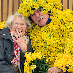 Daffodil Day launch