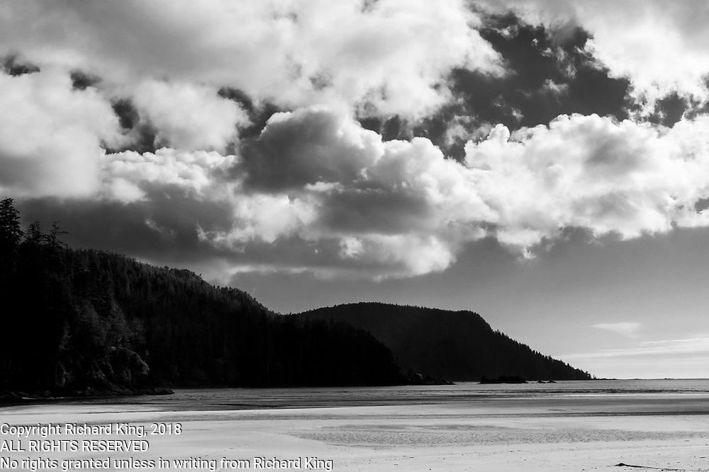 San Josef Trail and Beach Photography BC
