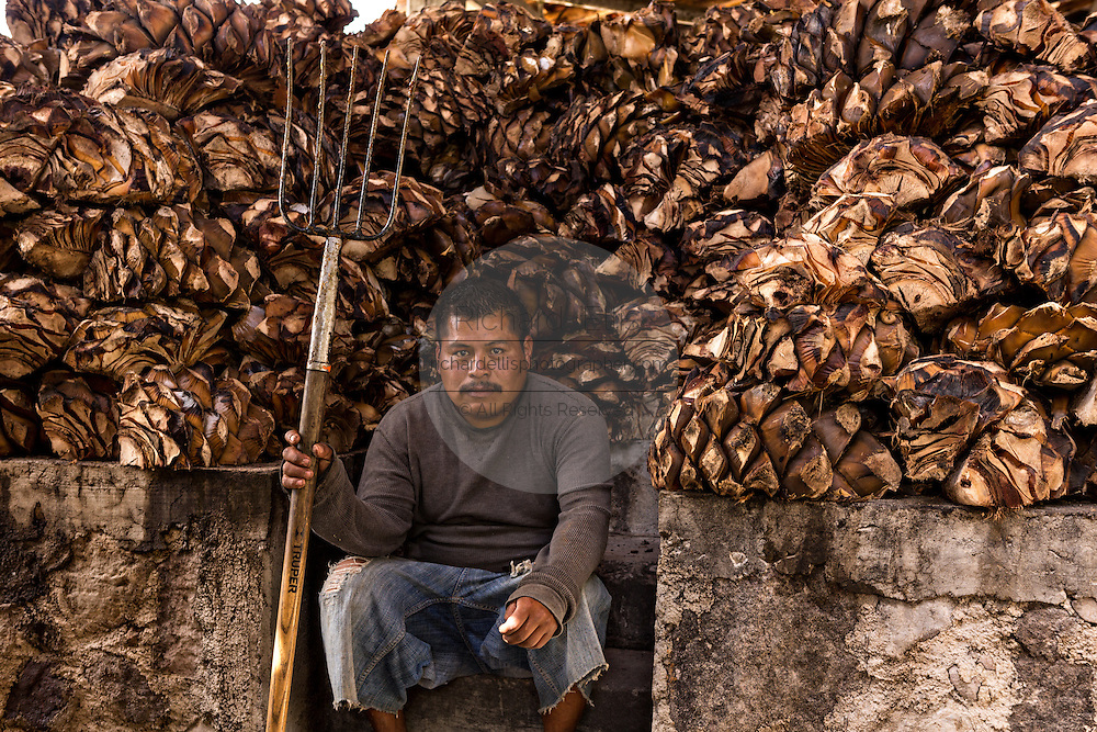 A worker rests after piling roasted blue agave hearts in the mill at an artisanal Mezcal distillery November 5, 2014 in Matatlan, Mexico. Making Mezcal involves roasting the blue agave, crushing it and then fermenting the liquid.