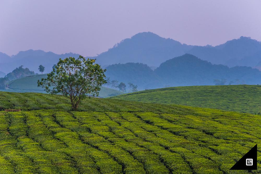 Vietnam - Son La Province