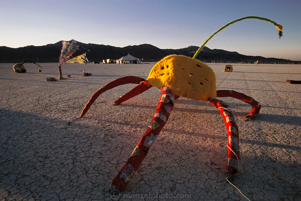 An art installation of giant bugs on the desert floor at Burning Man. Burning Man is a performance art festival known for art, drugs and sex. It takes place annually in the Black Rock Desert near Gerlach, Nevada, USA.
