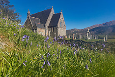 Bluebells St John's Church | Ballachulish | 7 May 2017