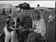 "Guinness Family Day At The Iveagh Gardens. (R83)..1988..02.07.1988..07.02.1988..2nd  July 1988..The family fun day for Guinness employees and their families took place at the Iveagh Gardens today. Top at the bill at the event were ""The Dubliners"" who treated the crowd to a performance of all their hits. Ireland's penalty hero from Euro 88, Packie Bonner, was on hand to sign autographs for the fans...Three ladies are pictured studying the itinerary for the days events at the family day out."