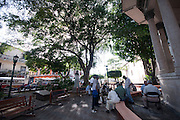 La Iglesia San Felipe Neri, una de las iglesias coloniales existentes en el Casco Antiguo, fue edificada después del traslado al sitio del Ancón en la nueva Ciudad de Panamá luego de ocurrir la toma, incendio y saqueo de Panamá la Vieja por el pirata Henry Morgan y sus huestes el 28 de enero de 1671. Jugadores de Damas en La Iglesia San Felipe Neri, una de las iglesias coloniales existentes en el Casco Antiguo de la ciudad de Panamá.©Victoria Murillo/Istmophoto.com