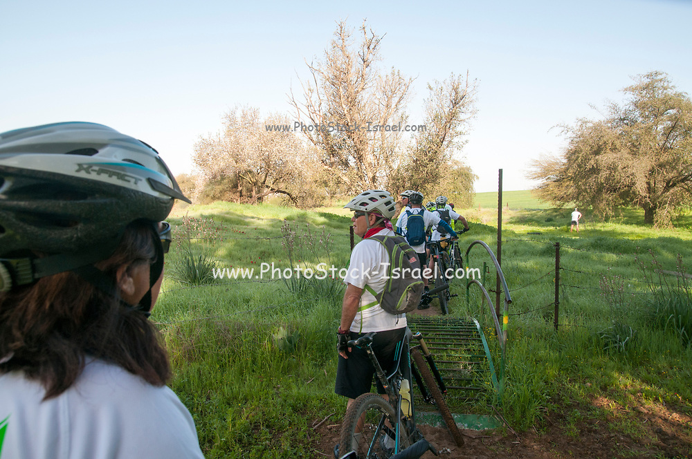 A group of leisure cross contry cyclists with protective clothing. Photographed Negev Desert, Israel