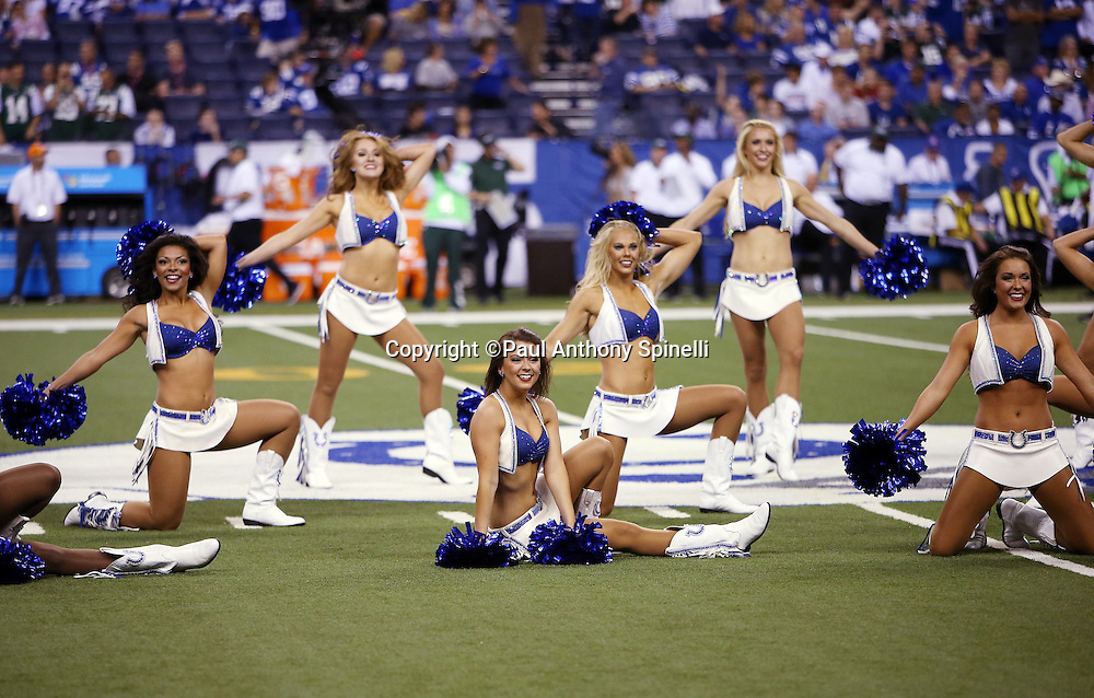 The Indianapolis Colts cheerleaders do a dance routine before the Indianapolis Colts 2015 NFL week 2 regular season football game against the New York Jets on Monday, Sept. 21, 2015 in Indianapolis. The Jets won the game 20-7. (©Paul Anthony Spinelli)