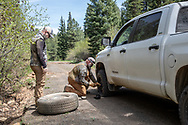 Flat tires are a normal occurrence while black bear hunting with hounds in Idaho. Kelly Lee changes the tire while Evan Heusinkveld looks on.
