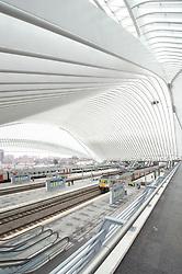 Santiago Calatrava • Guillemins Railway Station, Liège