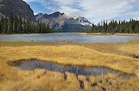 Bow Lake, Banff National Park Alberta