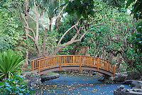 Hapuna beaches, Hawaii.  Pond scene with close up of wooden bridge