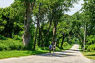 Bike Riders, Country Road, Manhanset Rd, Shelter Island, NY