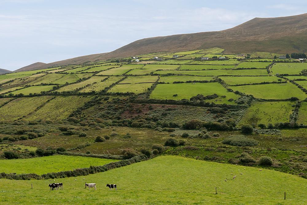 Irish countryside in County Kerry