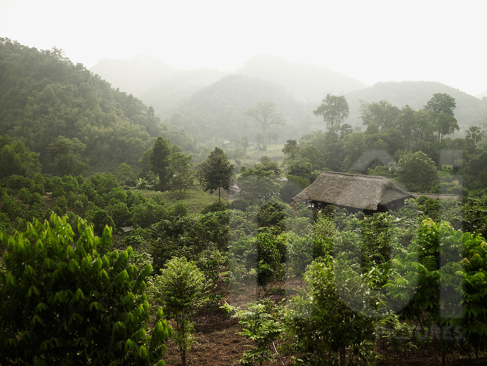 Mountainous landscape with a stilt house in the middle of the vegetation. Bucolic and quiet scene. Ecolodge green vietnam. Binh Xa, Tuyen Quang Province, Vietnam, Asia