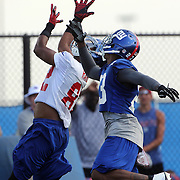 Wide reciever Rueben Randle makes a fine running catch defended by Corey Webster during the 2013 New York Giants Training Camp at the Quest Diagnostics Training Centre, East Rutherford, New Jersey, USA. 29th July 2013. Photo Tim Clayton.