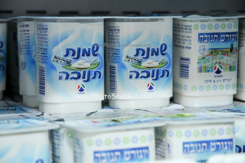 Tnuva Sour cream and yogurt dairy products