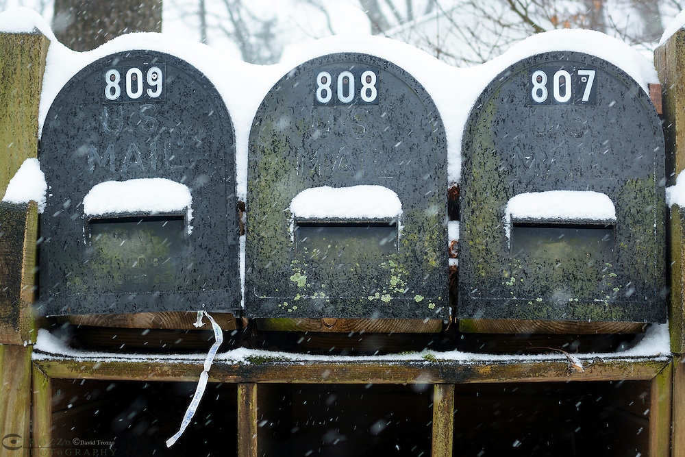 Snow covered postal boxes.