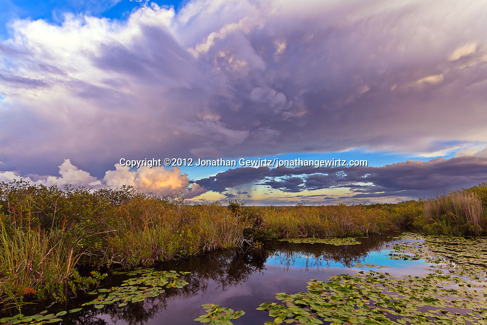Morning rain showers pass over Taylor Slough near the Anhinga Trail in Everglades National Park, Florida.<br />