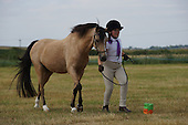Class 17 - Handy Pony & Horse